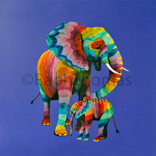 Rainbow Coloured Elephants by Raph Thomas