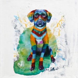Josie the Dog